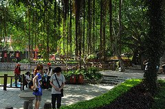 Shenzhen tours, sights and activities