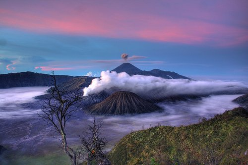 4D3N Mt. Bromo - Ijen Crater - Coffee Plantation