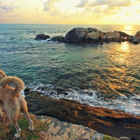 Puttalam tours, sights and activities