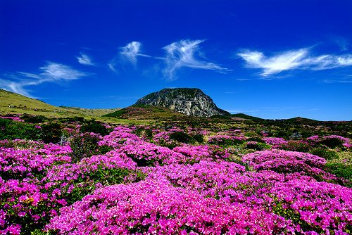 Jeju tours, sights and activities